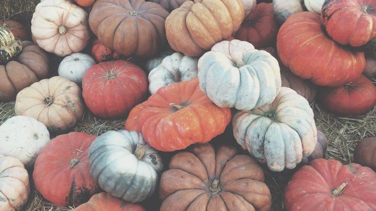 le verdure di stagione di dicembre