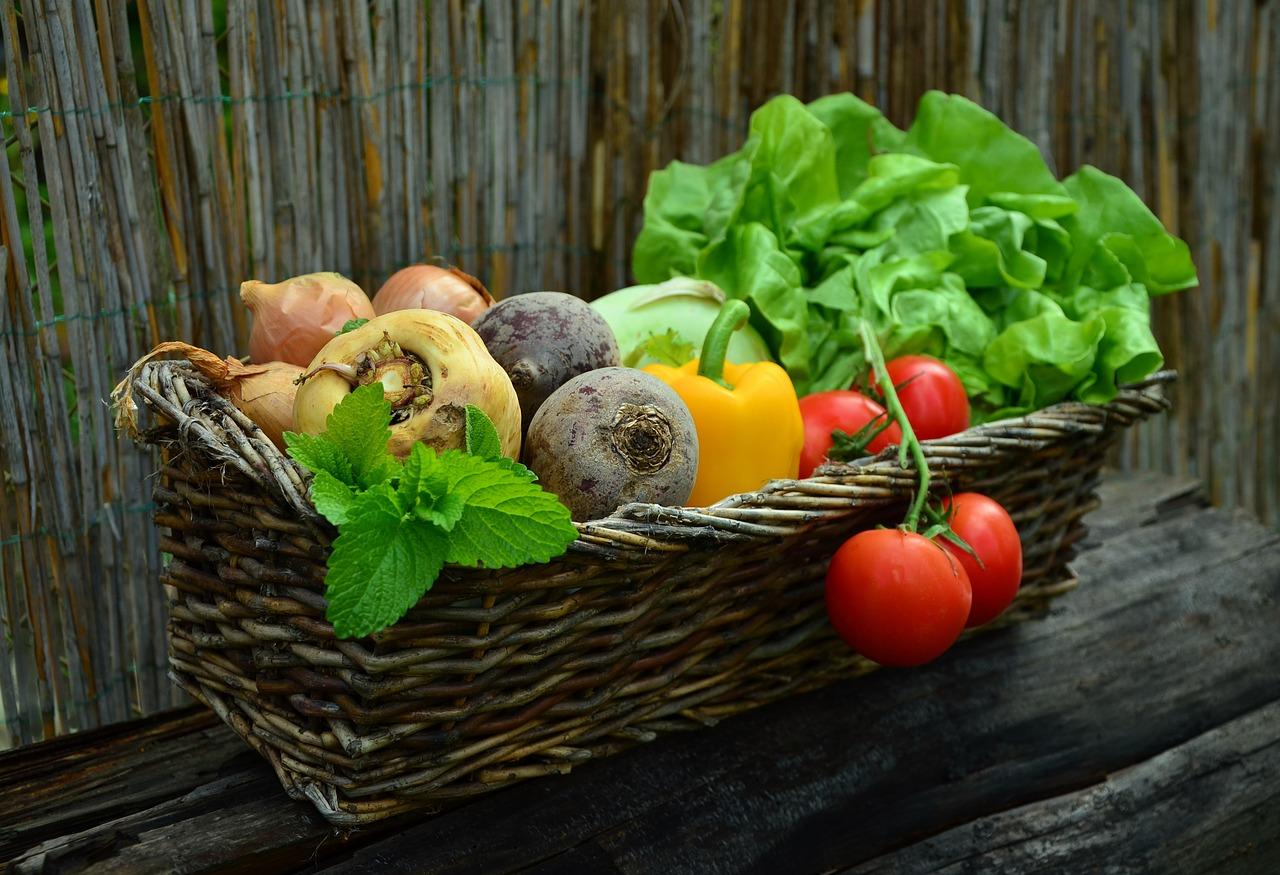 Le verdure di stagione di Giugno