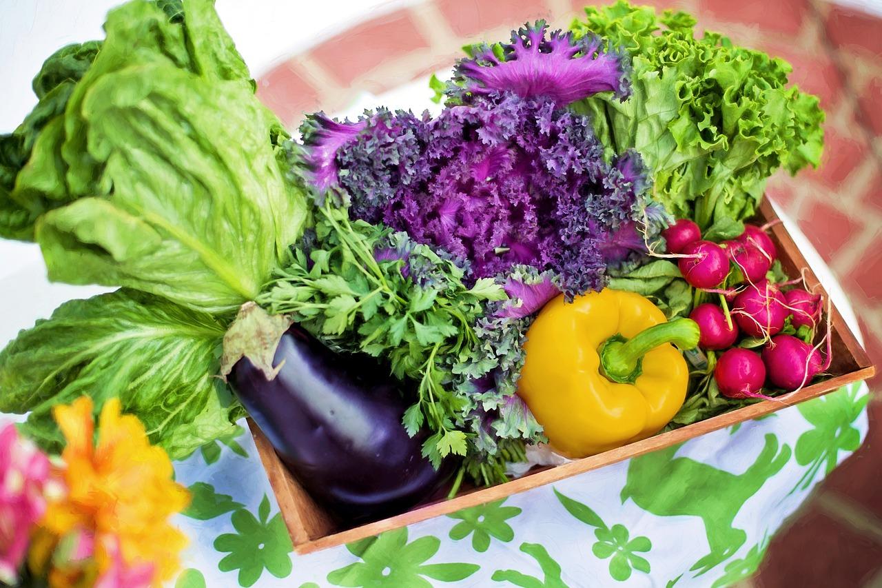 Le verdure di stagione di Luglio